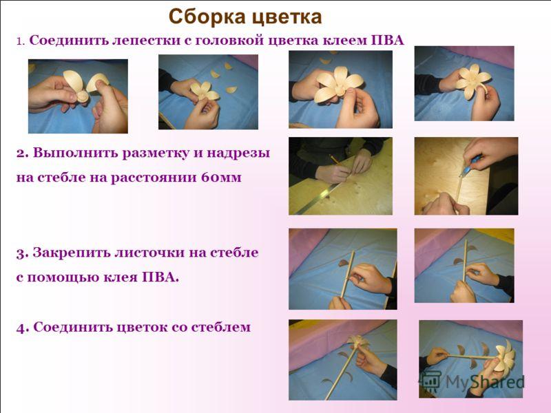 Сборка цветка 1. Соединить лепестки с головкой цветка клеем ПВА 2. Выполнить разметку и надрезы на стебле на расстоянии 60мм 3. Закрепить листочки на стебле с помощью клея ПВА. 4. Соединить цветок со стеблем