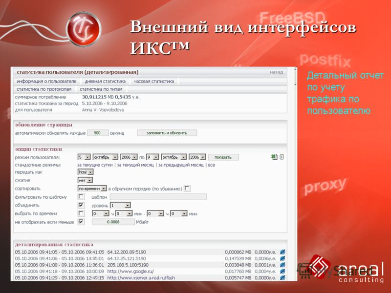 Внешний вид интерфейсов ИКС Детальный отчет по учету трафика по пользователю