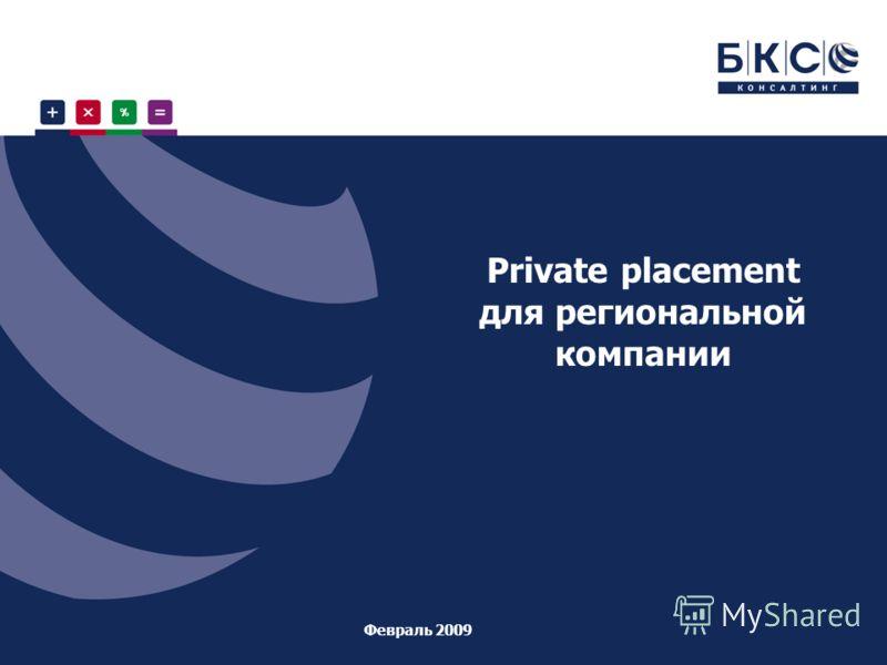 Private placement для региональной компании Февраль 2009