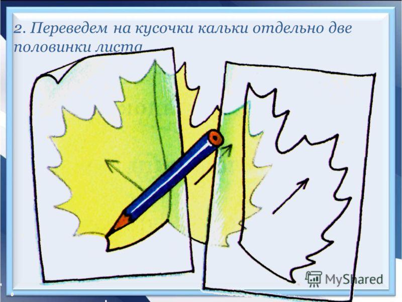 2. Переведем на кусочки кальки отдельно две половинки листа.
