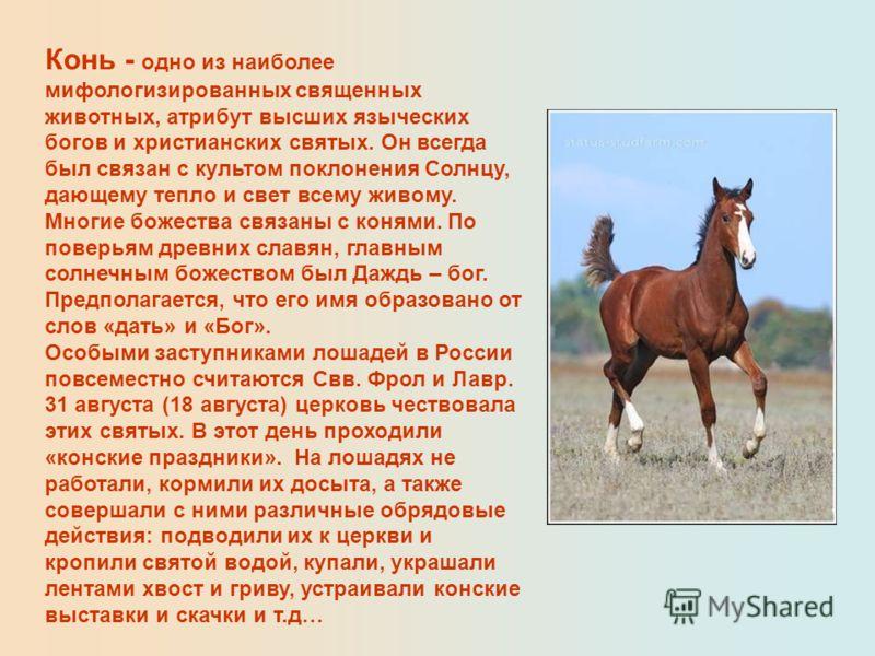 Конь - одно из наиболее мифологизированных священных животных, атрибут высших языческих богов и христианских святых. Он всегда был связан с культом поклонения Солнцу, дающему тепло и свет всему живому. Многие божества связаны с конями. По поверьям др