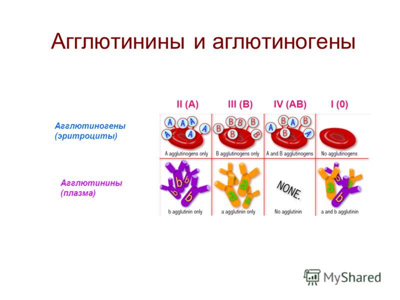 Агглютинины и аглютиногены Агглютиногены (эритроциты) Агглютинины (плазма) II (А)III (В)IV (АВ)I (0)