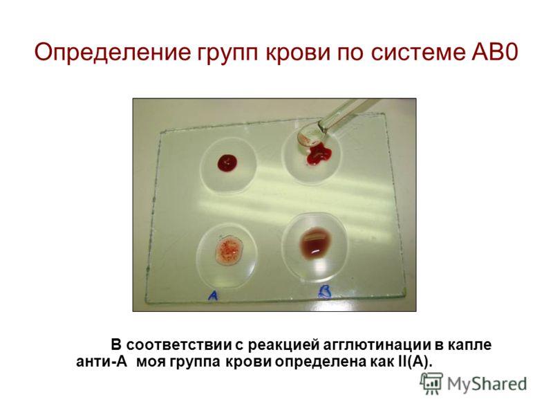 Определение групп крови по системе АВ0 В соответствии с реакцией агглютинации в капле анти-А моя группа крови определена как II(A).