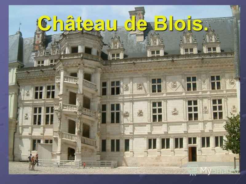 Château de Blois.