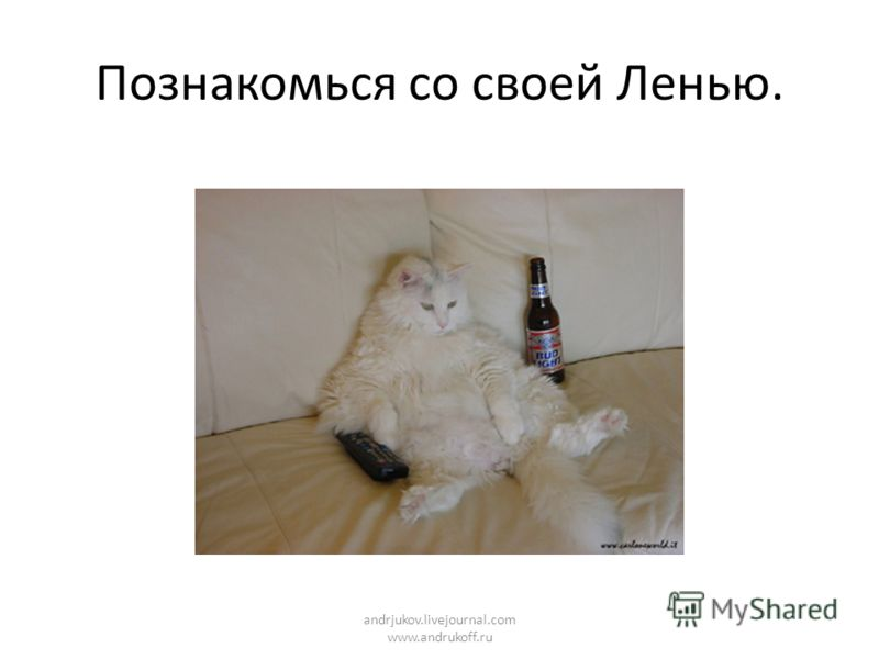 Познакомься со своей Ленью. andrjukov.livejournal.com www.andrukoff.ru