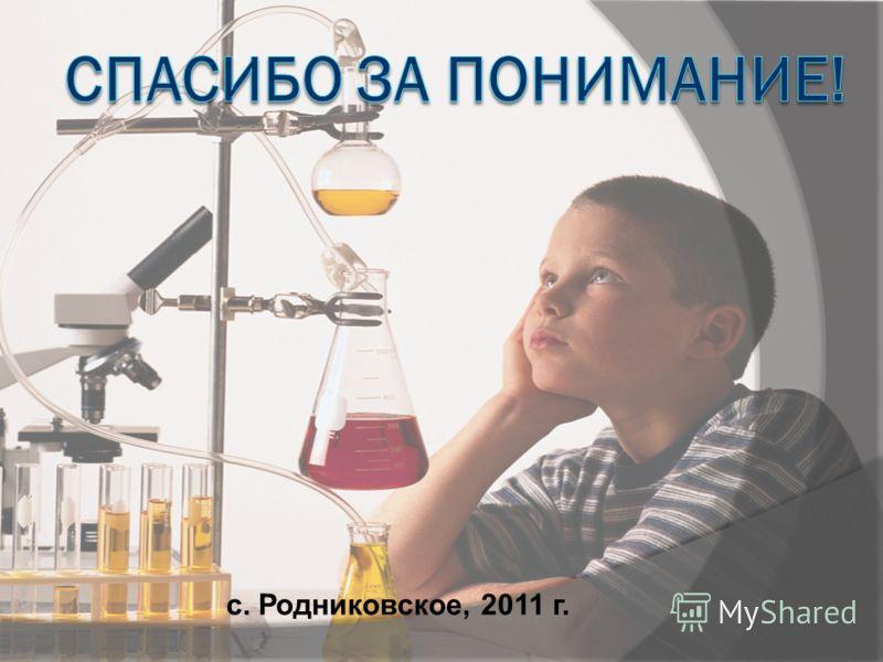 с. Родниковское, 2011 г.