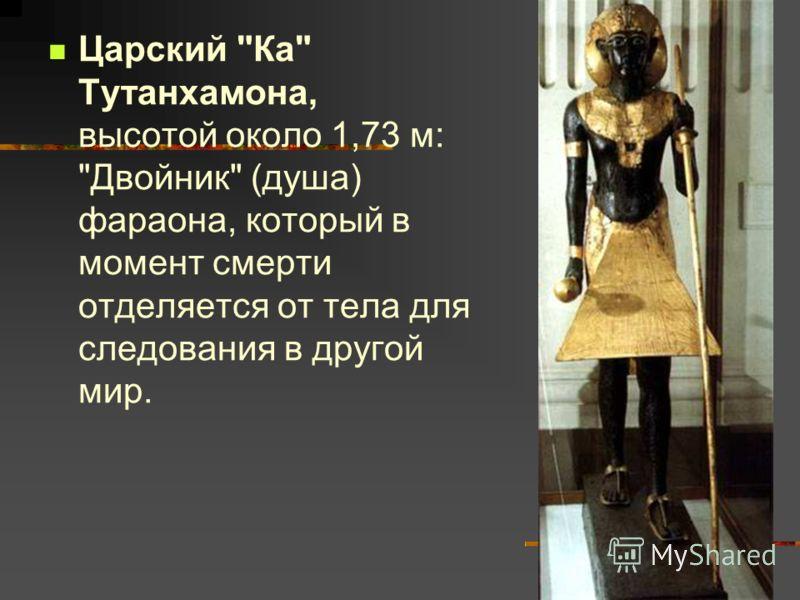 Царский Ка Тутанхамона, высотой около 1,73 м: Двойник (душа) фараона, который в момент смерти отделяется от тела для следования в другой мир.