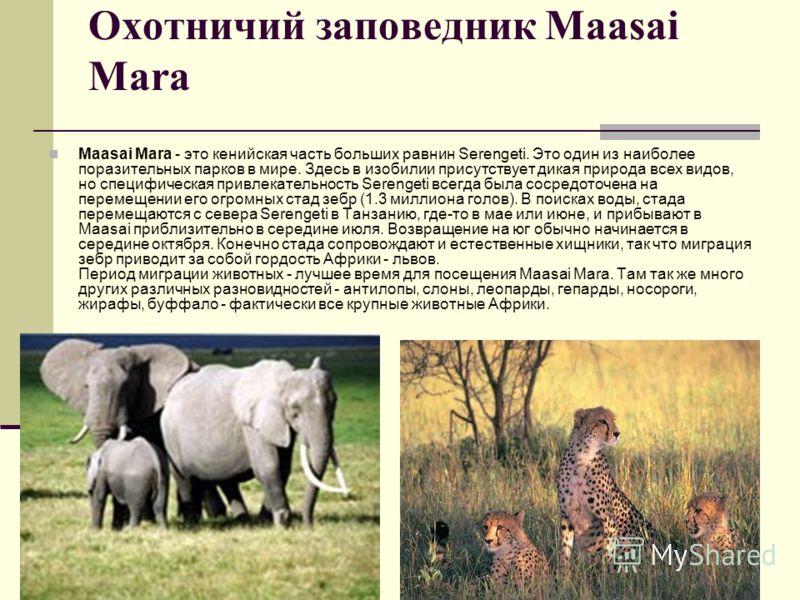 Охотничий заповедник Maasai Mara Maasai Mara - это кенийская часть больших равнин Serengeti. Это один из наиболее поразительных парков в мире. Здесь в изобилии присутствует дикая природа всех видов, но специфическая привлекательность Serengeti всегда