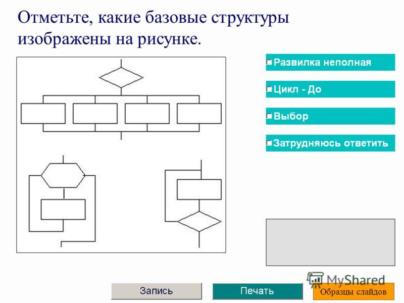 Отметьте, какие базовые структуры изображены на рисунке. Образцы слайдов