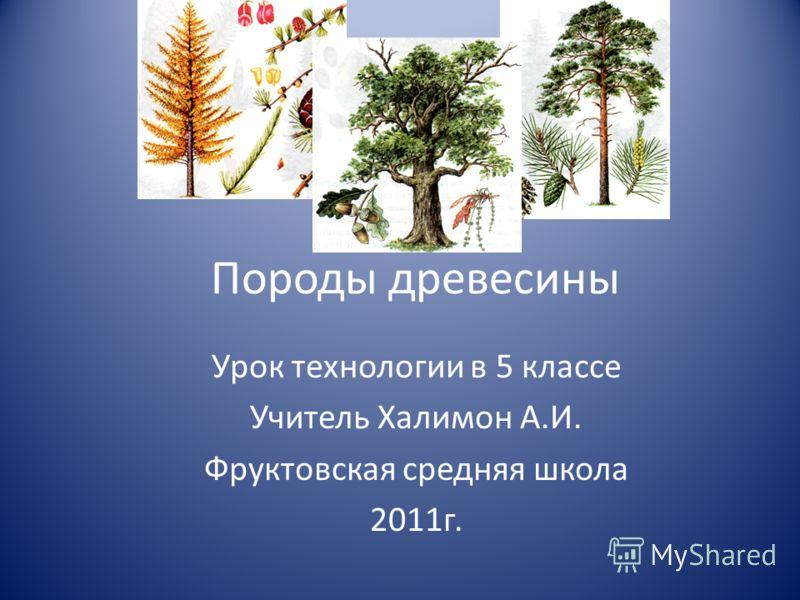Породы древесины Урок технологии в 5 классе Учитель Халимон А.И. Фруктовская средняя школа 2011г.