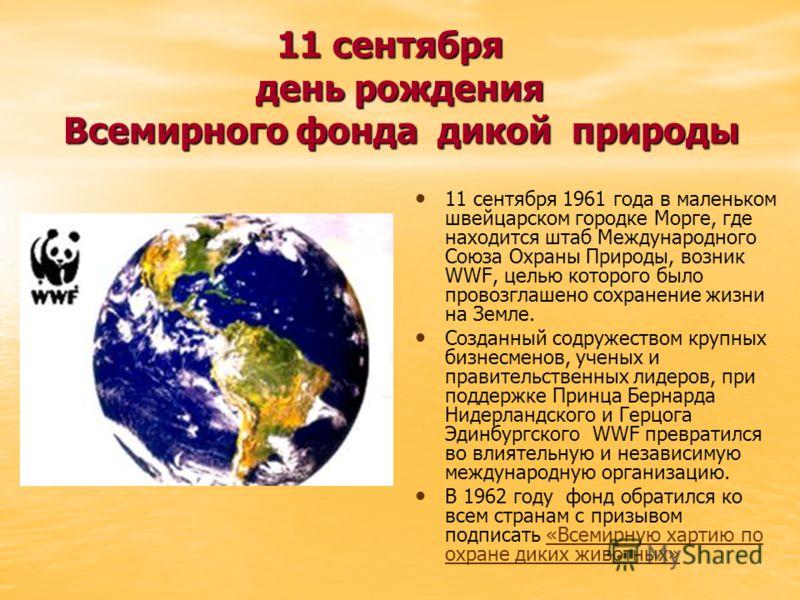 11 сентября день рождения Всемирного фонда дикой природы 11 сентября день рождения Всемирного фонда дикой природы 11 сентября 1961 года в маленьком швейцарском городке Морге, где находится штаб Международного Союза Охраны Природы, возник WWF, целью к