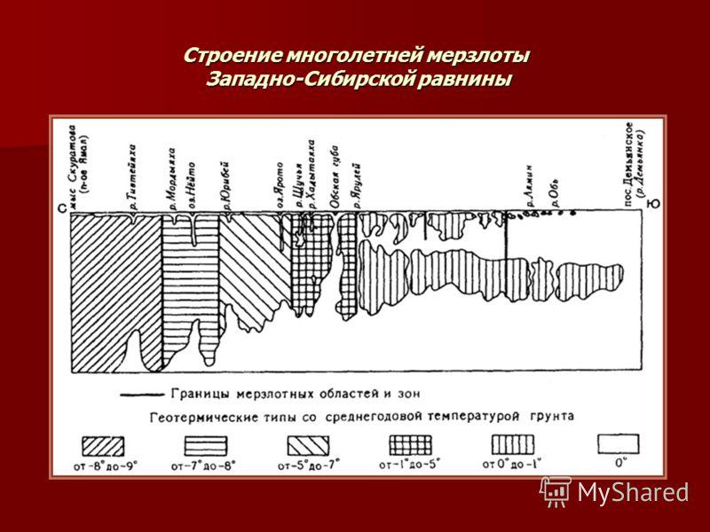 Строение многолетней мерзлоты Западно-Сибирской равнины