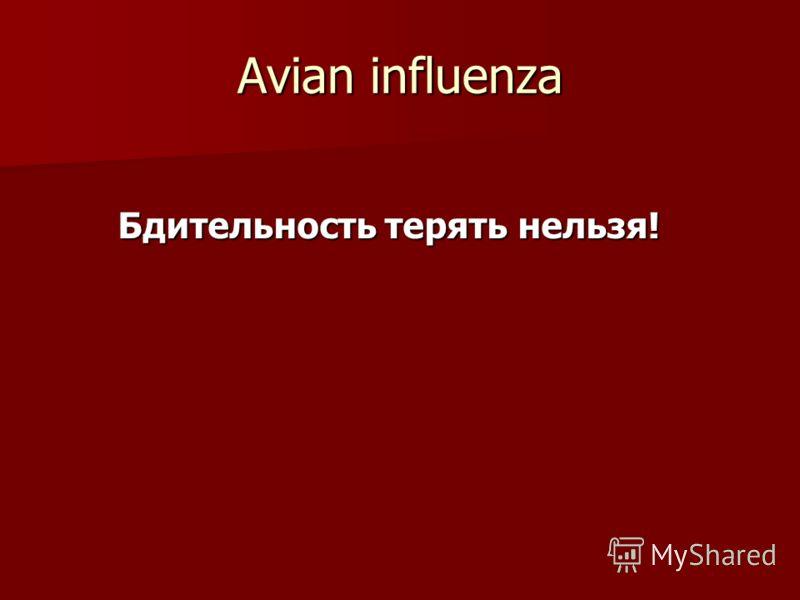 Avian influenza Бдительность терять нельзя! Бдительность терять нельзя!