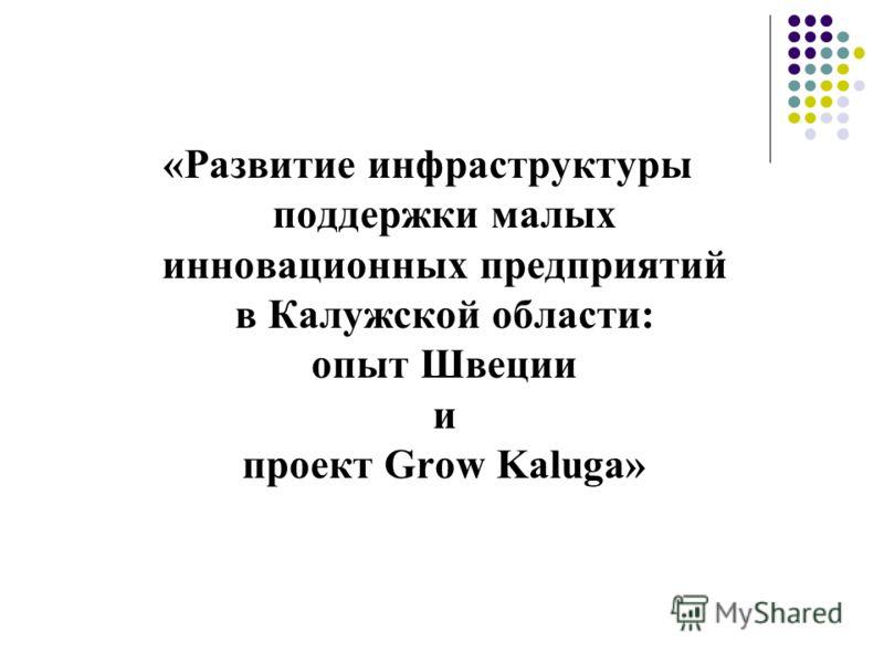 «Развитие инфраструктуры поддержки малых инновационных предприятий в Калужской области: опыт Швеции и проект Grow Kaluga»