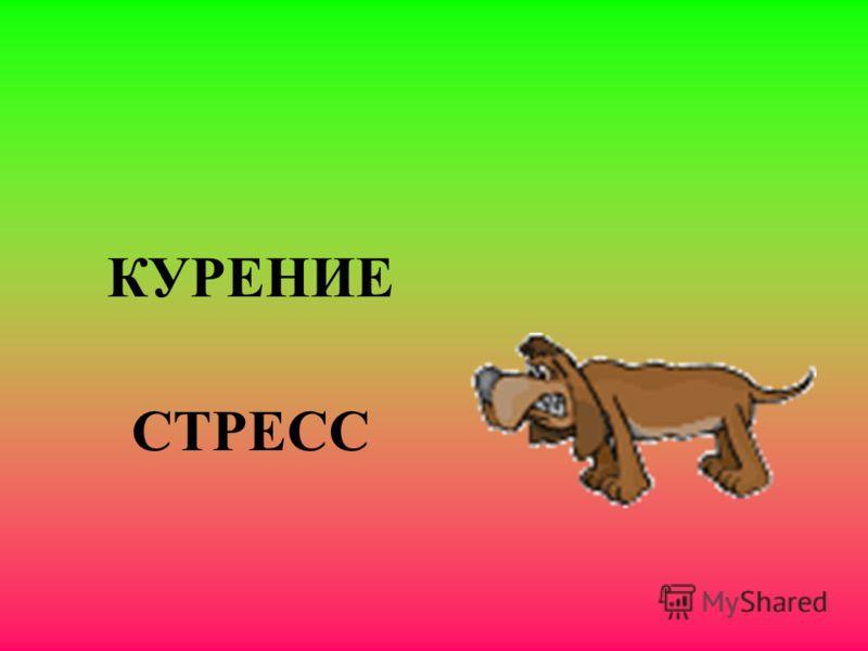 КУРЕНИЕ СТРЕСС