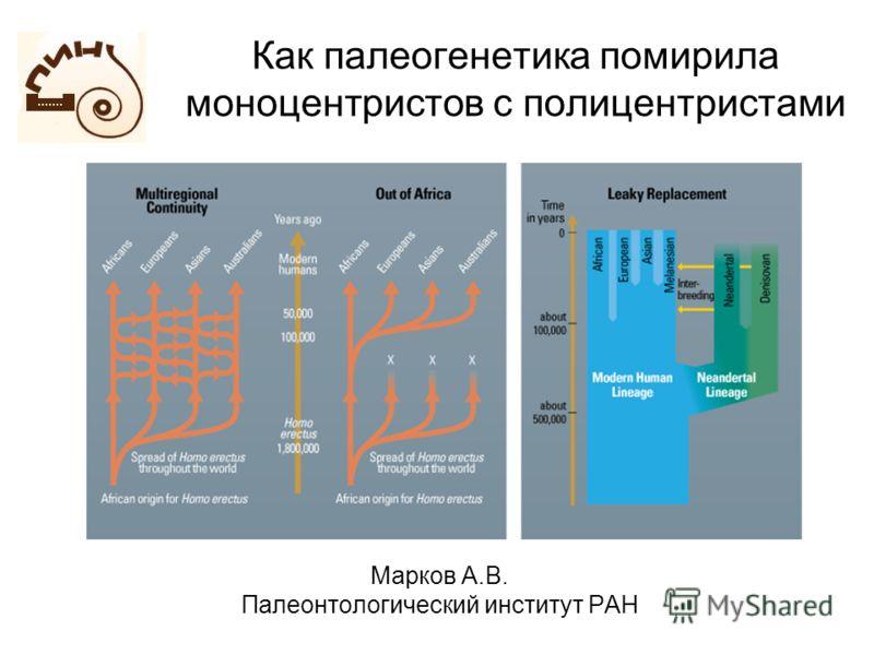 Как палеогенетика помирила моноцентристов с полицентристами Марков А.В. Палеонтологический институт РАН