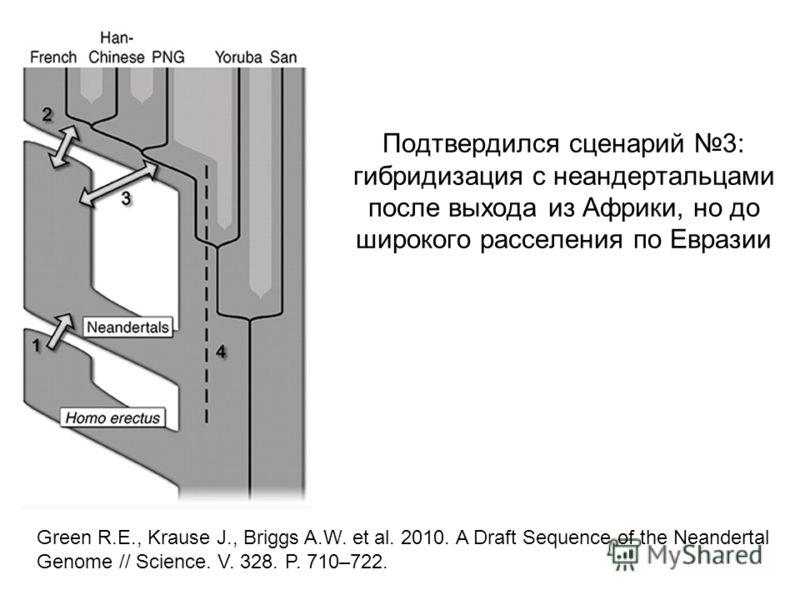 Подтвердился сценарий 3: гибридизация с неандертальцами после выхода из Африки, но до широкого расселения по Евразии Green R.E., Krause J., Briggs A.W. et al. 2010. A Draft Sequence of the Neandertal Genome // Science. V. 328. P. 710–722.