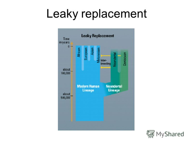 Leaky replacement