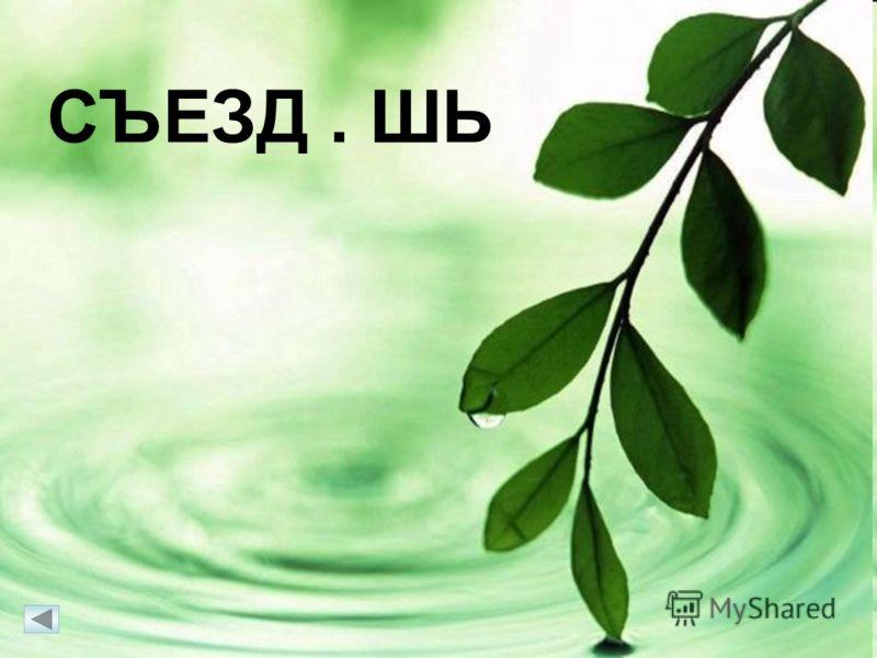 15 СЪЕЗД. ШЬ СЪЕЗДИШЬ