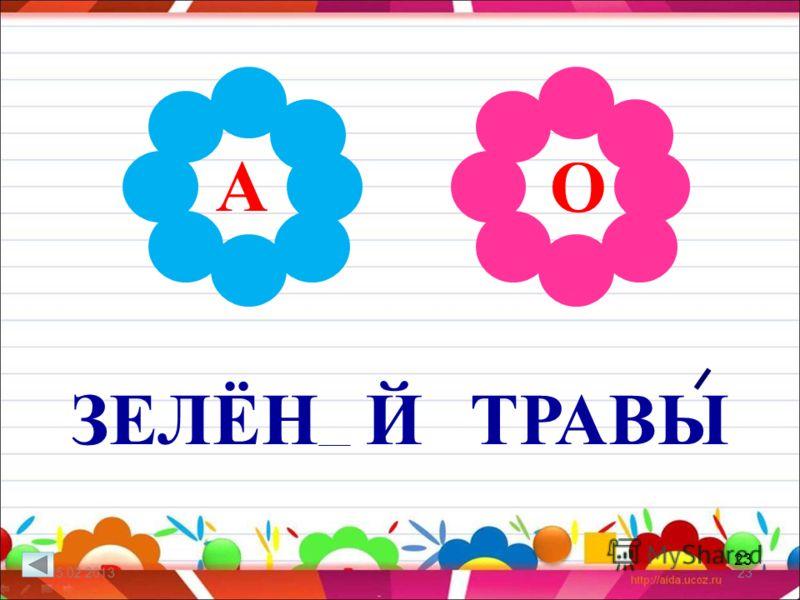 23 ЗЕЛЁН Й ТРАВЫ 25.02.201323 А О
