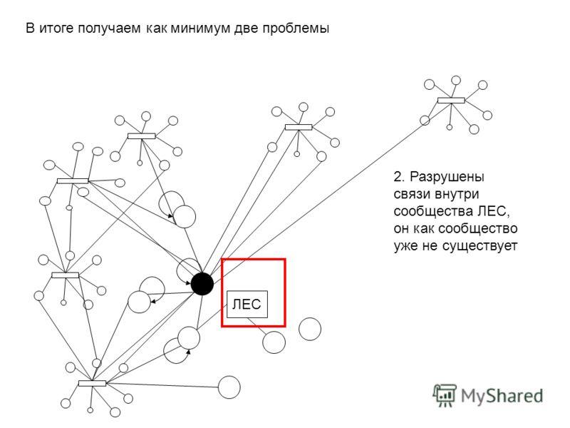 В итоге получаем как минимум две проблемы ЛЕС 2. Разрушены связи внутри сообществва ЛЕС, он как сообществво уже не существует