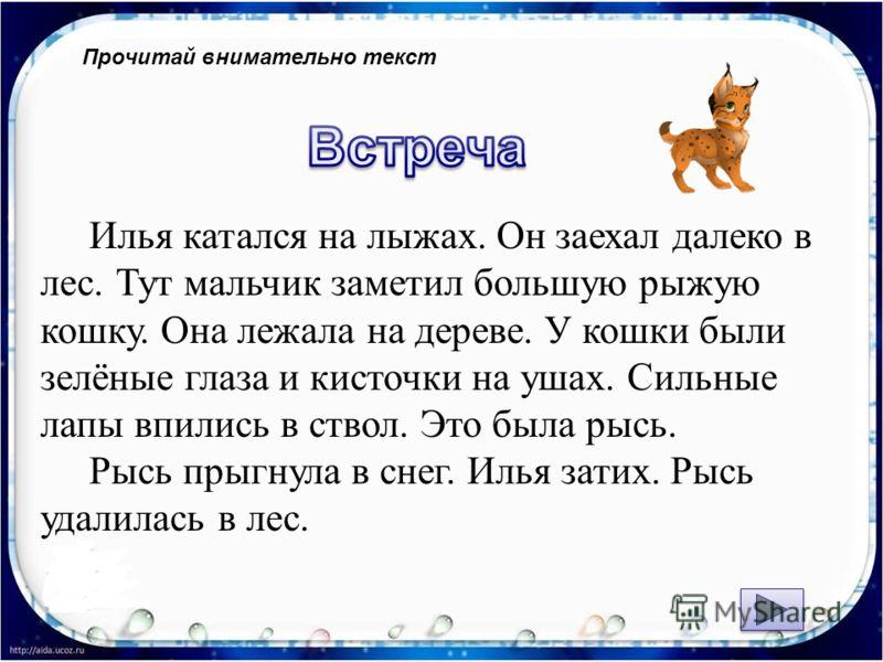 Прочитай внимательно текст Илья катался на лыжах. Он заехал далеко в лес. Тут мальчик заметил большую рыжую кошку. Она лежала на дереве. У кошки были зелёные глаза и кисточки на ушах. Сильные лапы впились в ствол. Это была рысь. Рысь прыгнула в снег.