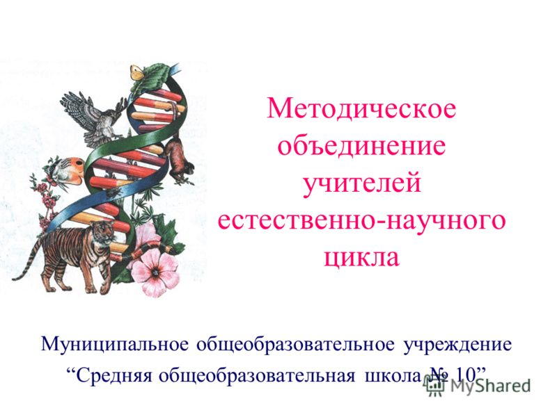 Методическое объединение учителей естественно-научного цикла Муниципальное общеобразовательное учреждение Средняя общеобразовательная школа 10