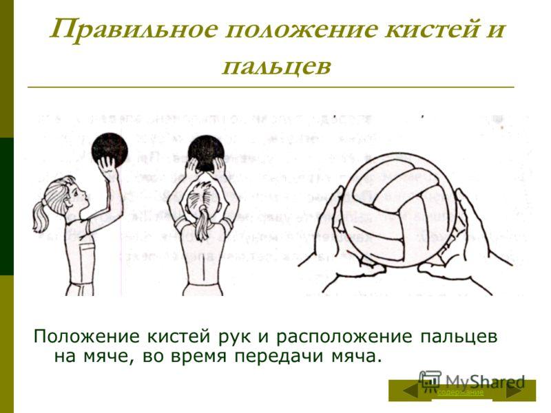 Правильное положение кистей и пальцев Положение кистей рук и расположение пальцев на мяче, во время передачи мяча. содержание