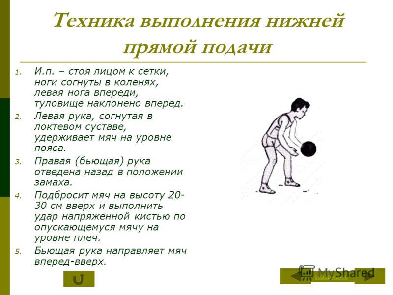 Техника выполнения нижней прямой подачи 1. И.п. – стоя лицом к сетки, ноги согнуты в коленях, левая нога впереди, туловище наклонено вперед. 2. Левая рука, согнутая в локтевом суставе, удерживает мяч на уровне пояса. 3. Правая (бьющая) рука отведена
