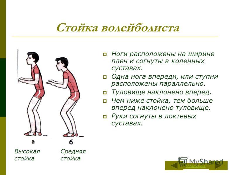 Стойка волейболиста Ноги расположены на ширине плеч и согнуты в коленных суставах. Одна нога впереди, или ступни расположены параллельно. Туловище наклонено вперед. Чем ниже стойка, тем больше вперед наклонено туловище. Руки согнуты в локтевых сустав