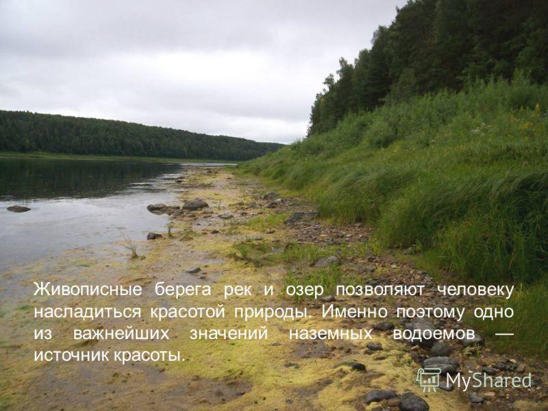 Живописные берега рек и озер позволяют человеку насладиться красотой природы. Именно поэтому одно из важнейших значений наземных водоемов источник красоты.
