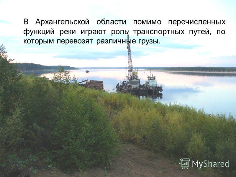 В Архангельской области помимо перечисленных функций реки играют роль транспортных путей, по которым перевозят различные грузы.