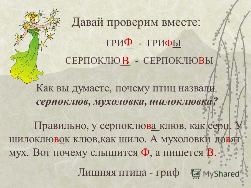 Давай проверим вместе: ГРИ__ - ГРИФЫ СЕРПОКЛЮ__ - СЕРПОКЛЮВЫ Ф В Как вы думаете, почему птиц назвали серпоклюв, мухоловка, шилоклювка? Правильно, у серпоклюва клюв, как серп. У шилоклювок клюв,как шило. А мухоловки ловят мух. Вот почему слышится Ф, а