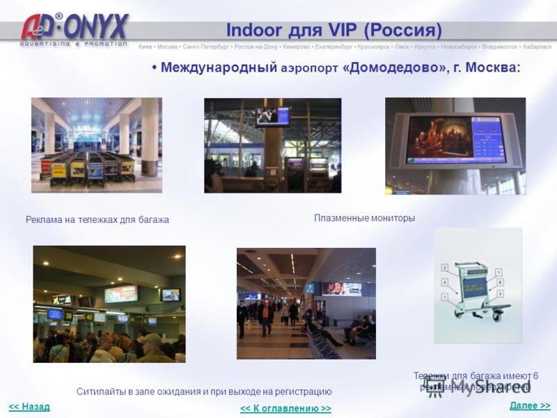 Indoor для VIP (Россия) Международный аэропорт «Домодедово», г. Москва: Реклама на тележках для багажа Плазменные мониторы Ситилайты в зале ожидания и при выходе на регистрацию Тележки для багажа имеют 6 рекламных поверхностей Далее >>
