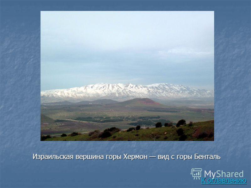 Израильская вершина горы Хермон вид с горы Бенталь К оглавлению К оглавлению