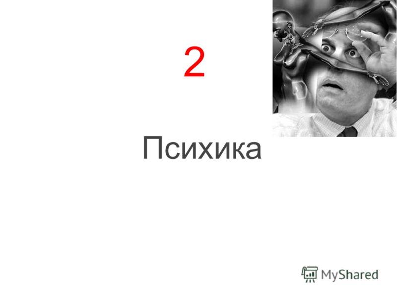 2 Психика