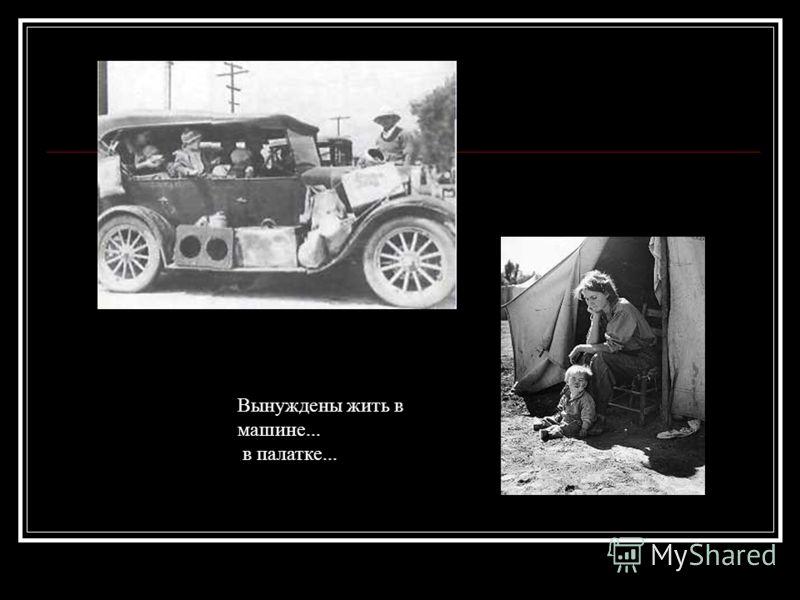 Вынуждены жить в машине... в палатке...