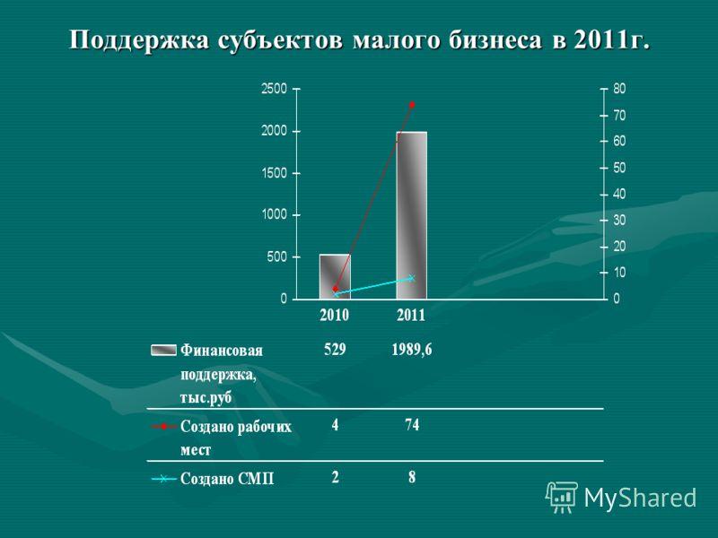 Поддержка субъектов малого бизнеса в 2011г.