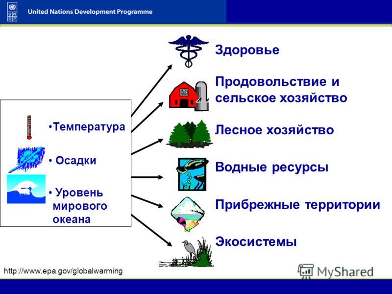 UNDP-GEF Adaptation 4 UNDP-GEF Climate Change Adaptation Workshop & Training Course 4 Влияние на развитие общества и экономику: Производительность в сельском и лесном хозяйстве Повышение рисков нехватки водных ресурсов Учащение экстремальных погодных