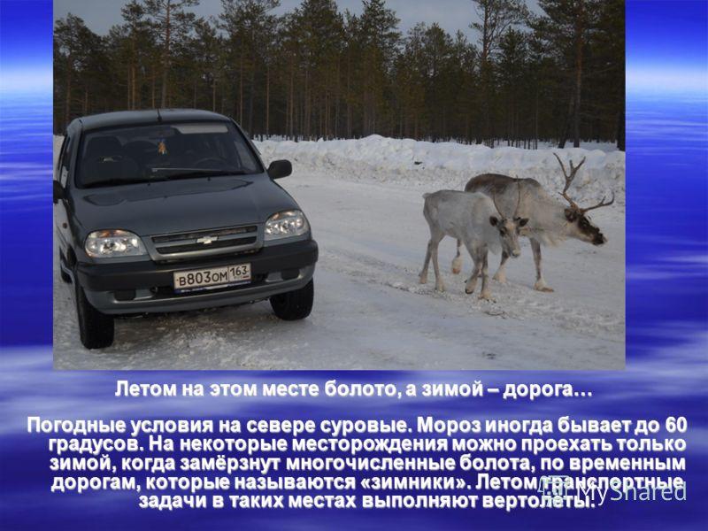 Летом на этом месте болото, а зимой – дорога… Погодные условия на севере суровые. Мороз иногда бывает до 60 градусов. На некоторые месторождения можно проехать только зимой, когда замёрзнут многочисленные болота, по временным дорогам, которые называю