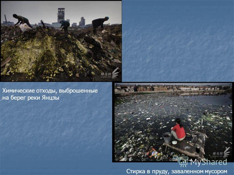 Химические отходы, выброшенные на берег реки Янцзы Стирка в пруду, заваленном мусором