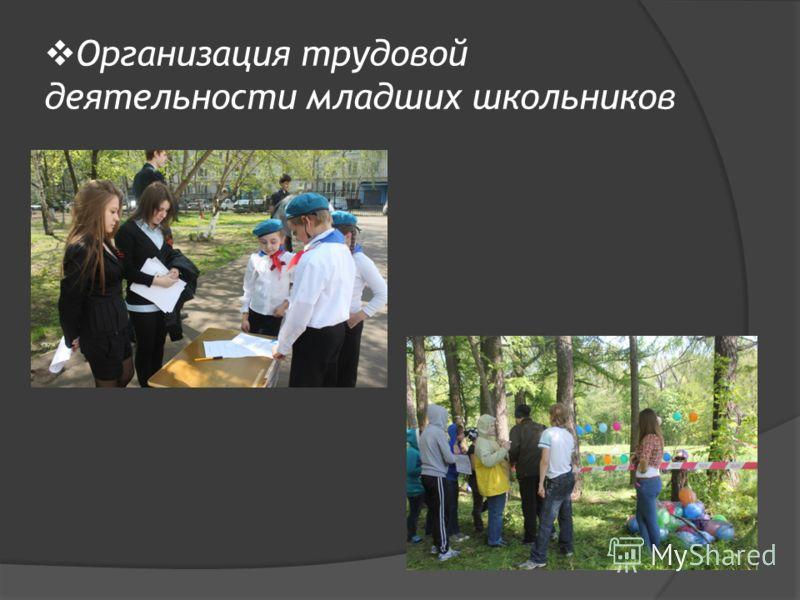 Организация трудовой деятельности младших школьников