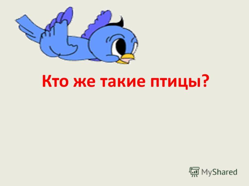 Кто же такие птицы?