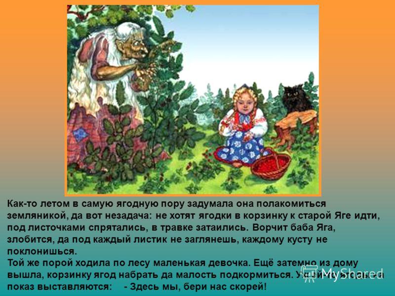 В некотором царстве, в славном государстве, возле речки древней, у большой деревни стоял дремучий бор. Грибов и ягод водилось там видимо-невидимо, да только местным жителям радости от этого не было совсем, потому как обитала в чаще того леса старая к