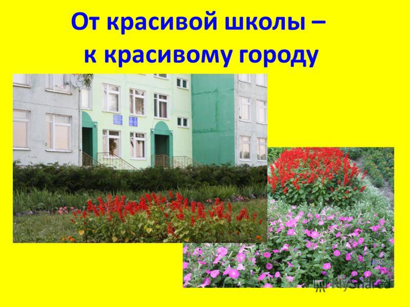 От красивой школы – к красивому городу