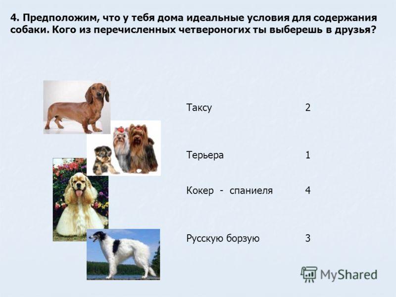 4. Предположим, что у тебя дома идеальные условия для содержания собаки. Кого из перечисленных четвероногих ты выберешь в друзья? Таксу2 Терьера1 Кокер - спаниеля4 Русскую борзую3
