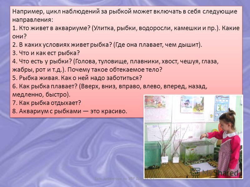 Например, цикл наблюдений за рыбкой может включать в себя следующие направления: 1. Кто живет в аквариуме? (Улитка, рыбки, водоросли, камешки и пр.). Какие они? 2. В каких условиях живет рыбка? (Где она плавает, чем дышит). 3. Что и как ест рыбка? 4.