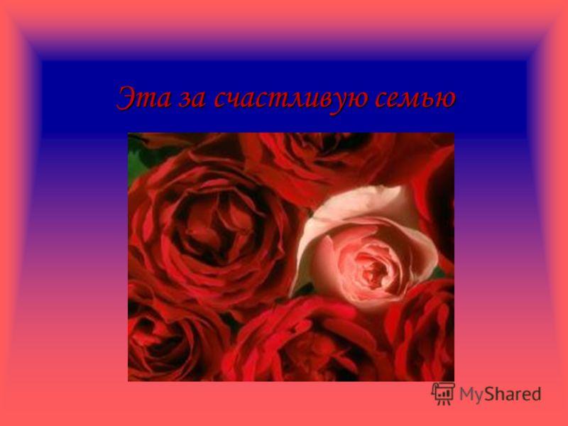 Одна роза тоже за сладкую нежность