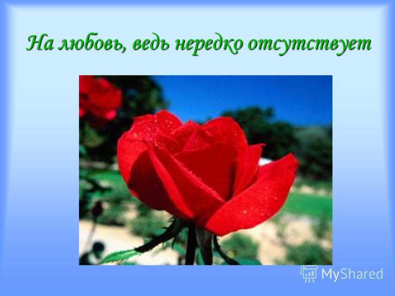 Розы дружбу сияют