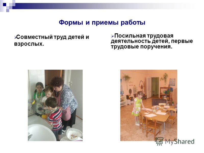 Формы и приемы работы Совместный труд детей и взрослых. Посильная трудовая деятельность детей, первые трудовые поручения.